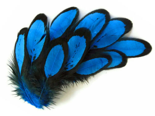 Turquoise Blue Whiting Farms Laced Hen Saddle Feathers Fly Tying Craft 1 Dozen