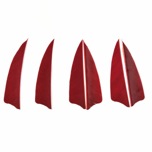 36PCS 3 Inch Turkey Feather Arrow Vanes for Shaft Bow Archery Shooting