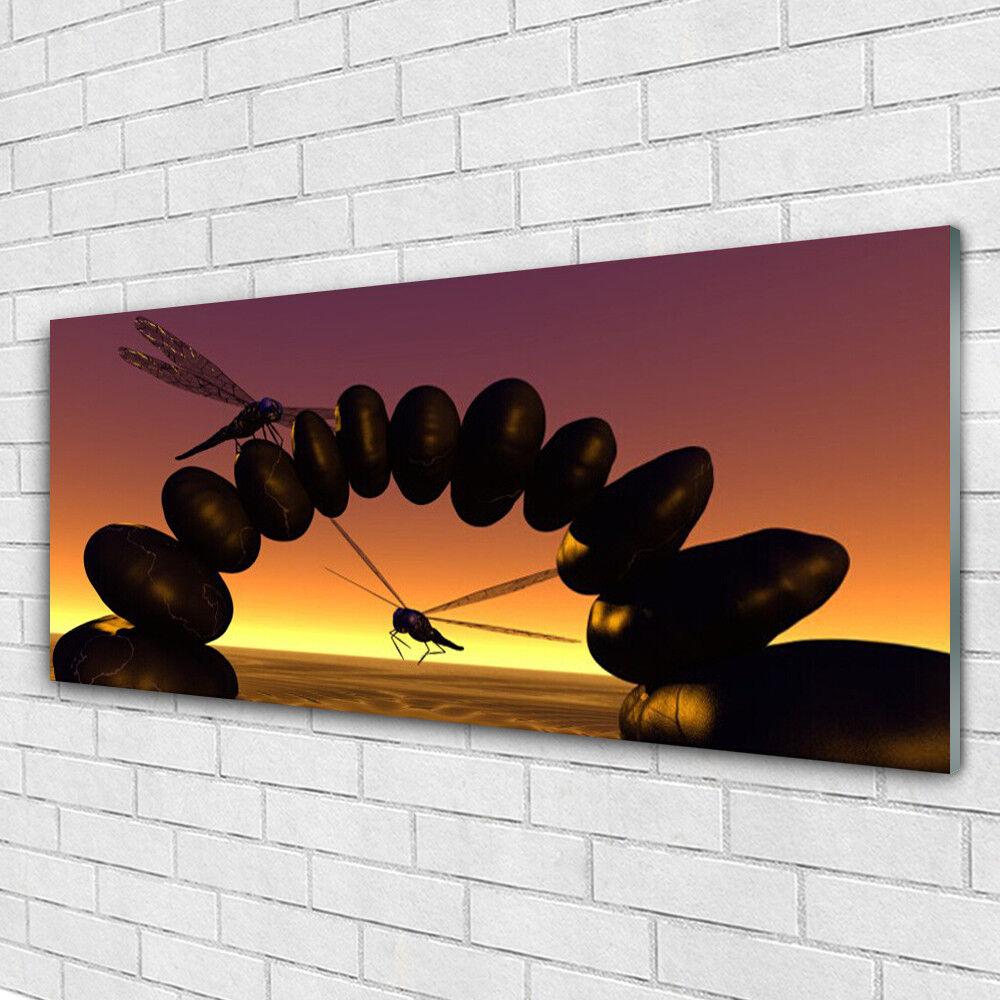 Verre Imprimer Wall Art Image 125x50 Photo Libellules pierres art