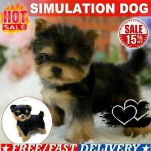 Realistische-Yorkie-Hund-Simulation-Spielzeug-Hund-Welpen-Lebensechte-L8Z8
