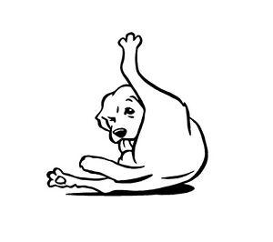 Dog Licking Balls Nuts Self Vinyl Decal Sticker Window Glass Funny Humor