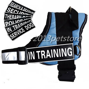 S L on Service Dog In Training Vest Harness W 2 Reflective