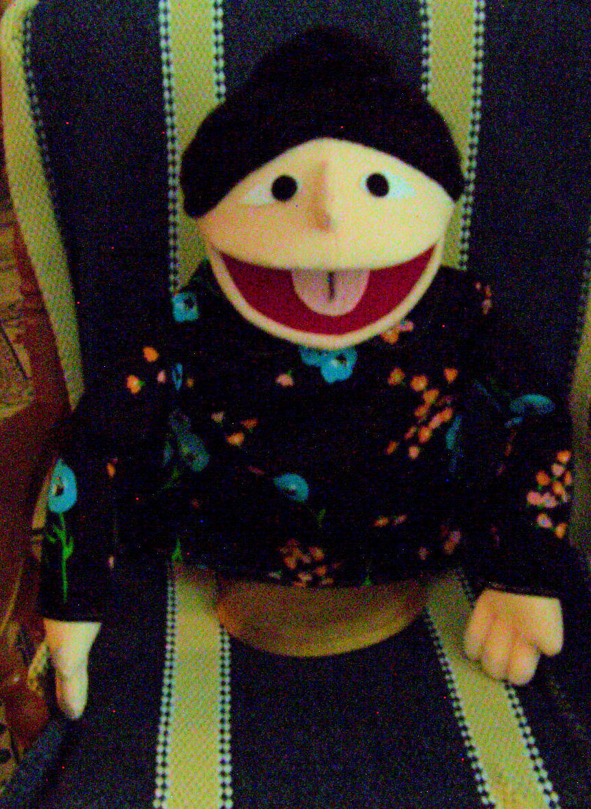 Large Asian Mom or Lady Puppet-ministry, education, entertainment