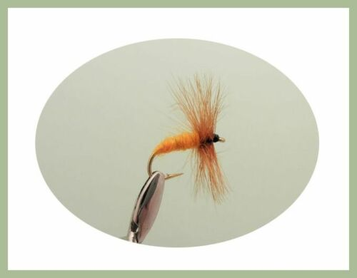 Dry Trout Flies Black /& Peacock Coch Y Bondhhu Mixed Size Carrot 18 Pack