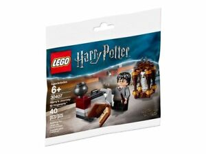 LEGO-Harry-Potter-30407-Polybag-Harry-s-Journey-to-Hogwarts-RARITAT-NEU-OVP