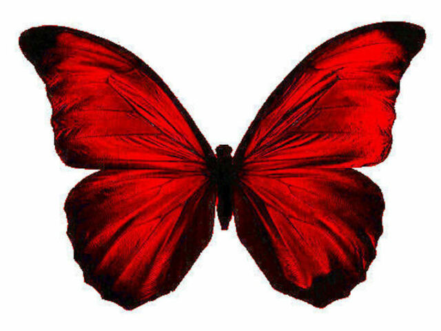 24 x Stunning RUBY RED Colour Butterflies Edible Decorations Cup Cake Toppers