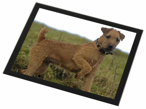 Lakeland Terrier Dog Black Rim Glass Placemat Animal Table Gift, ADLT1GP