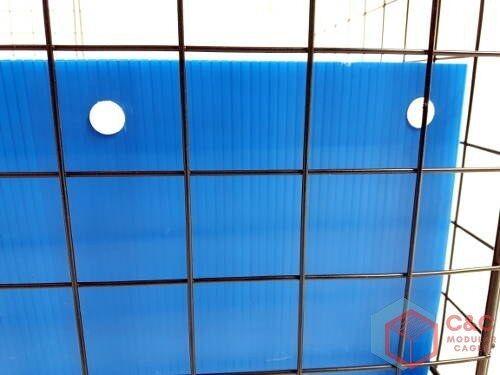 Cage 3x1 Cage de Guinée: Panneaux X 8 Connecteurs 16 Plateau Correx Inclus