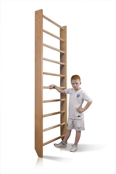 Sport Wall Bars Swedish Ladder Gymnastic Climbing Home Kids Playground Gym 220cm
