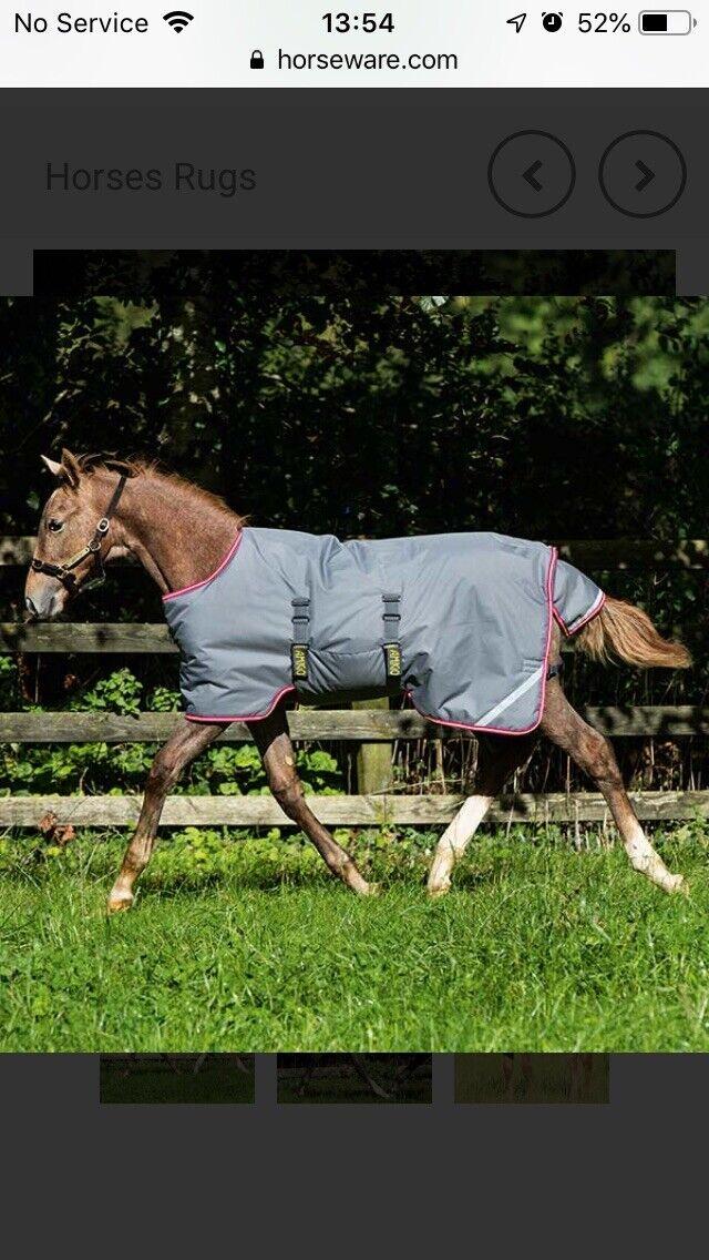 BNWT Horseware Ireland Amigo Puledro Tappeto 3' regolabile
