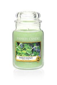 YANKEE-CANDLE-candela-profumata-giara-grande-Wild-Mint-durata-150-ore