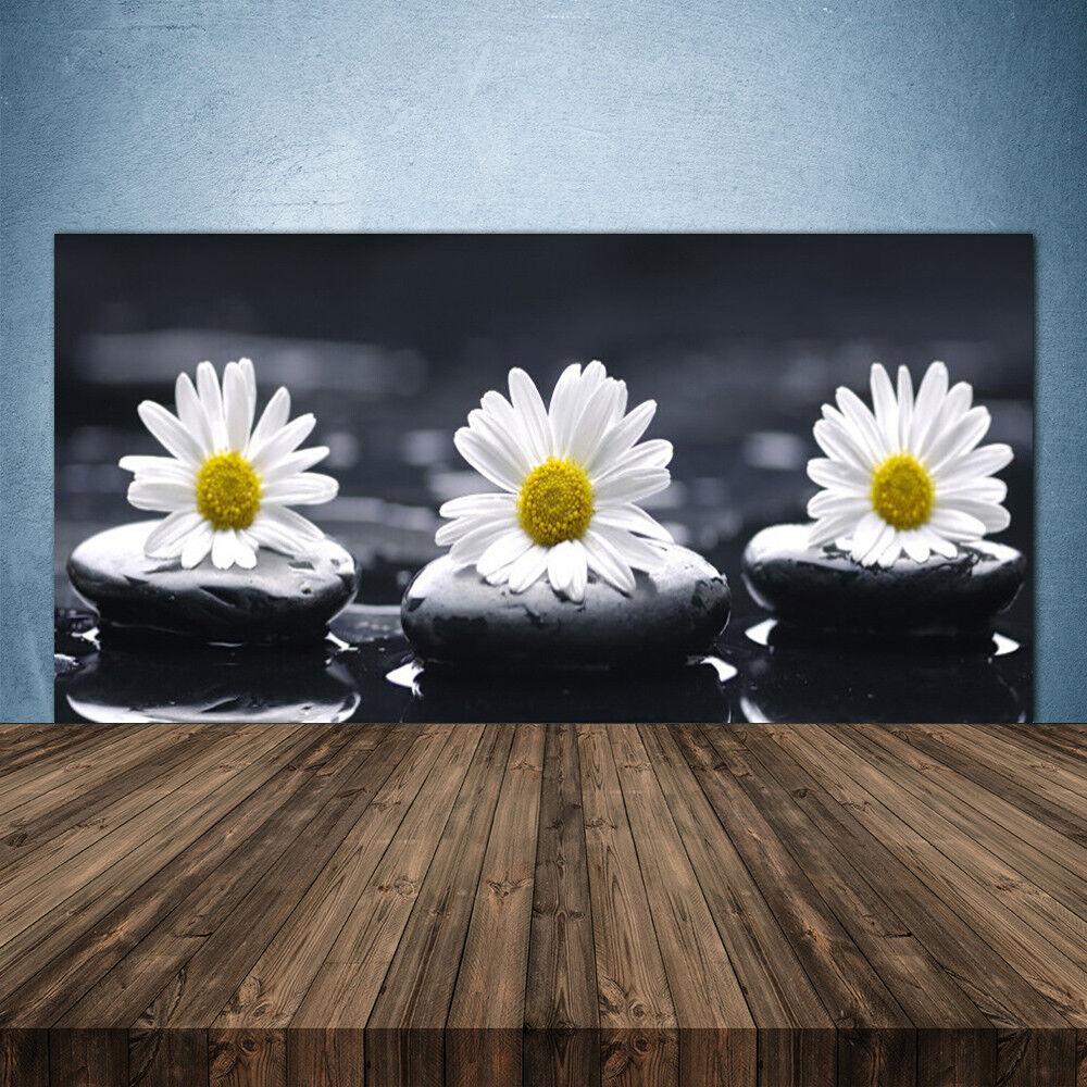 Crédence de cuisine en verre Panneau 140x70 Floral Marguerite Pierres