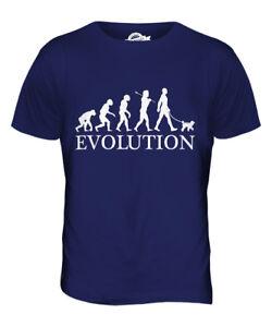 Poodle Dog T Shirt Evolution