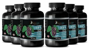 L-DOPA-99-Extract-Powder-350mg-Mucuna-Sports-Supplements-6-Bottles-360-Capsules
