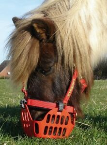 Greenguard-Maulkorb-Weidesaison-Rehe-Hufrehe-Pony-Pferd-Cob-Fressbremse-Qualitaet