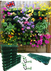 VertiVerd-Vertical-Garden-Living-Wall-Green-Wall-Modular-Planter-System