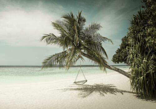 FOTOTAPETE Tapete WANDBILDER XXL 15F0400920 Palmen Strand Meer Strand und Tropen