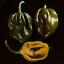 Saras green pepper 10 fresh seeds