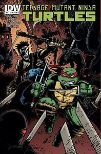 TMNT-Teenage-Mutant-Ninja-Turtles-22-IDW-Cover-B-1st-printing-May-2013
