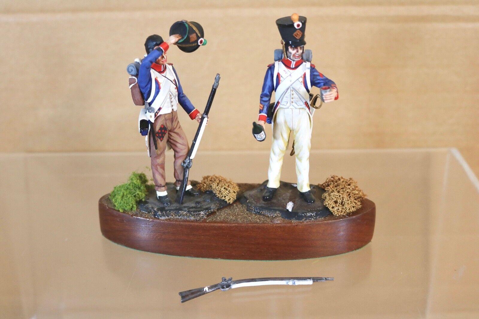 Tradición Stadden 90mm Napoleonic Francés Fusilier Soldado Estudio Pintado Nn