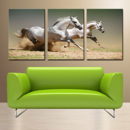 White Horses ready to hang set of 3 mounted wall art//surpassed stretched canvas