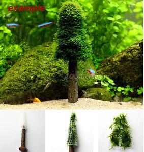 Aquarium Cultivation Moss Christmas Tree Plant Tank Decoration(Moss not include) | eBay