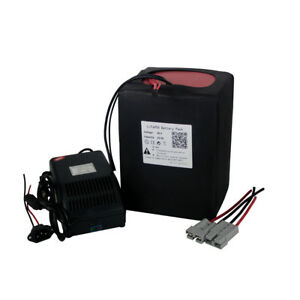 48V20Ah-Lithium-LiFePO4-Battery-5A-Charger-50A-BMS-for-1000W-Motor-3-2V-Cell