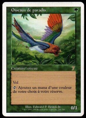 MRM FR//VF Oiseaux de paradis Birds of paradise MTG magic 5ED