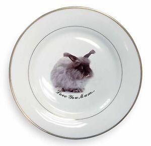 Angora-Rabbit-039-Love-You-Mum-039-Gold-Rim-Plate-in-Gift-Box-Christmas-Pre-AR-8lymPL