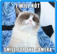 Funny Cat Humor Grumpy Cat I Will Not Refrigerator Magnet