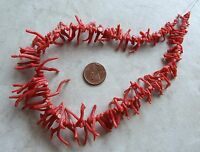 14 Strand Italian Branch Coral Gemstone Organic Natural Briolette Beads 7-30mm