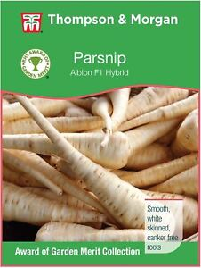 Thompson & Morgan - RHS Vegetables - Parsnip Albion F1 - 300 Seed