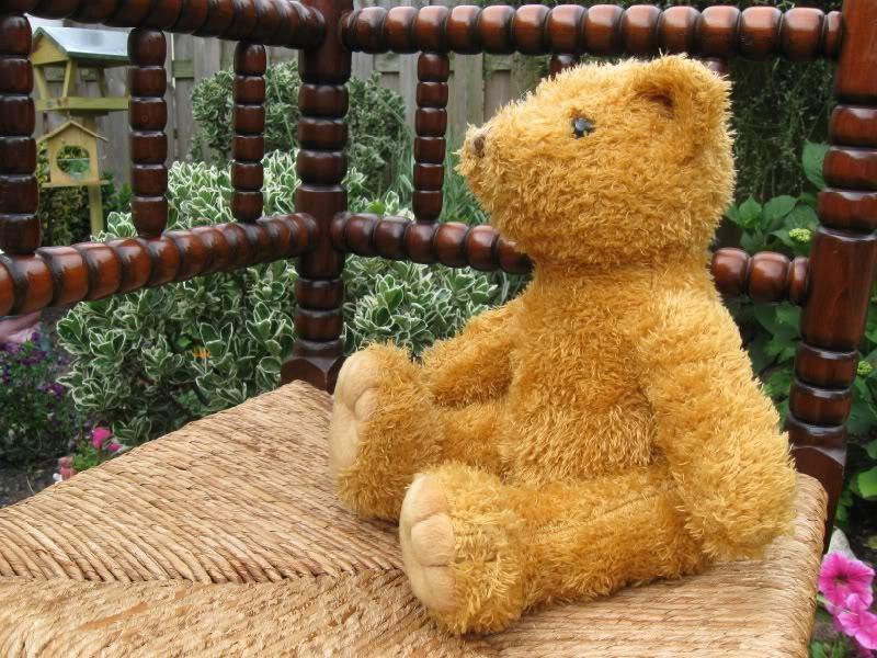 Dutch Holle Holle Holle 1980s Teddy orso a1796e