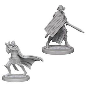 Pathfinder Deep Cuts Unpainted Miniatures Elf Male Paladin NEW