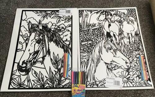 2 Large Horses Velvet Colouring Picture Boards Plus 8 Felt Tips.