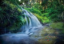 """CHOIS WM4236 Landscape Wall Mural Forest Waterfall Wallpaper Sticker 100"""" x 145"""""""