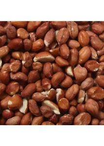 Grade A Peanuts for Wild Birds Big 25kgs Groundnut Kernels Bird Food Nuts