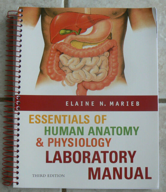 Essentials Of Human Anatomy And Physiology Lab Manual By Elaine N Marieb 2005 Spiral Revised