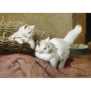 Cat and Two Butterflies by Arthur Heyer White Angora Kitty Art 8x10 Print 0130