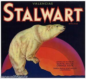 Stalwart Valencai Orange Crate Label Art Print Polar Bear Santa Paula Ventra Ca
