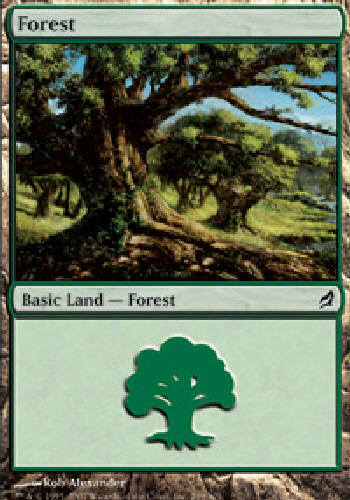 FOREST #299 BASIC LAND X4 4 4X Lorwyn MTG Magic the Gathering DJMagic