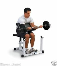 Preacher Curl Weight Lifting Flat Bench For Home Gym (30484)