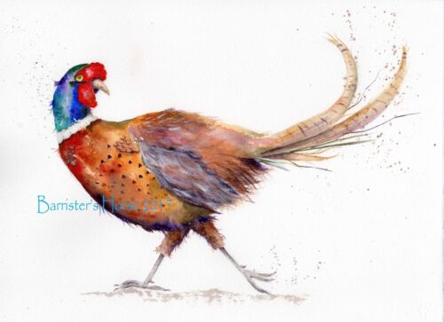 GAME BIRD FLIRTY PHEASANT WATERCOLOUR FINE ART//GICLEE PRINT WALL ART PAINTING