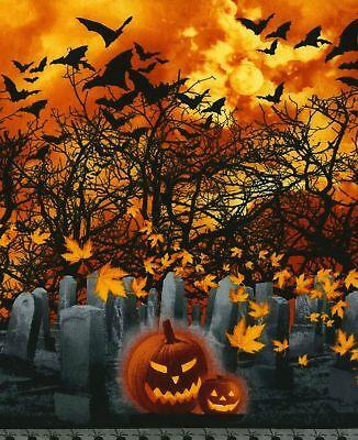 Timeless Treasures Fabric Graveyard Stripe Orange HALF METRE
