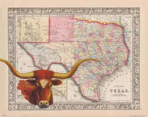 Texas Longhorns Football Art Print Vintage State Map Cattle Rancher Rodeo MAP69