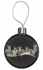Bengal-Kittens-Posing-for-Camera-Christmas-Tree-Bauble-Decoration-Gift-AC-29CB