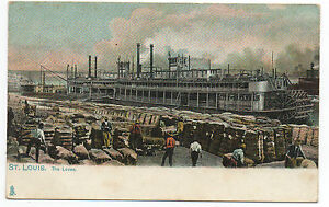 Antique POSTCARD c1910 The Levee ST. LOUIS, MO., New