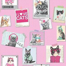 COOL CRAZY CATS WALLPAPER - RASCH 272802 - NEW PINK GIRLS BEDROOM DECOR