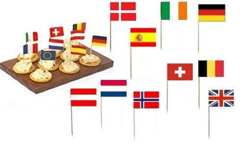 10 EUROPEAN COUNTRY NATIONAL FLAG COCKTAIL STICKS PICKS PARTY DECOR EUROPE EU