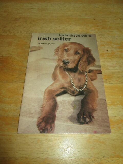 How to Raise and Train an Irish Setter, Robert Gannon TFH Publications 1961 P/B